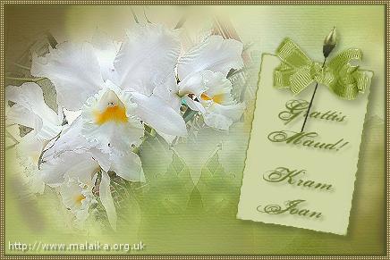 grattis på födelsedagen ha en underbar dag Maud Dickson födelsedag grattis på födelsedagen ha en underbar dag